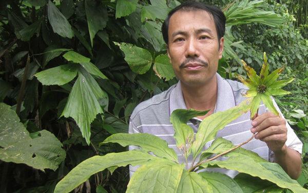việc tử tế lương y Phạm Văn Thanh